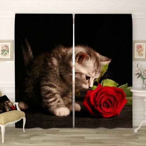 Фотошторы Котёнок и роза