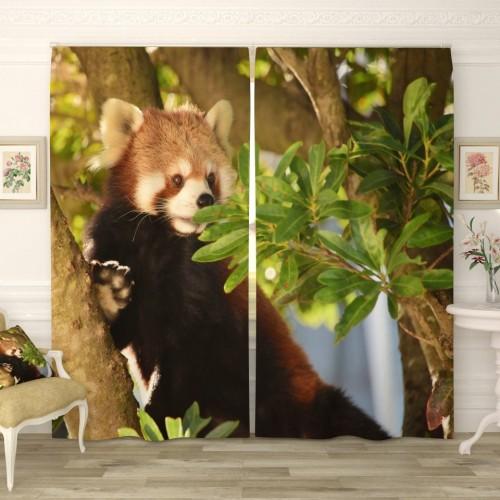 Фотошторы Малая панда на дереве