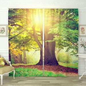 Фотошторы Солнечное дерево