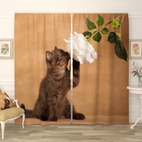 Фотошторы Котёнок с цветком