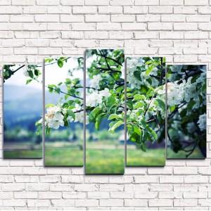 Модульная картина Цветущая яблоня 5-1