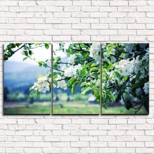 Модульная картина Цветущая яблоня 3-1