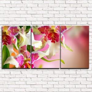 Модульная картина Цветочный дизайн 3-1