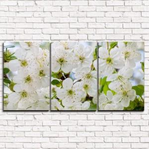 Модульная картина Цветущая вишня 3-1