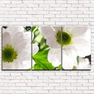 Модульная картина Цветы белые 3-1