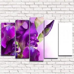 Модульная картина Фиолетовый цветок в росе 5-1