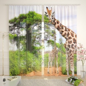 Фототюль Два жирафа